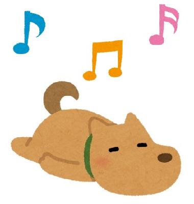 音楽セラピーワンちゃん